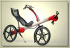 Cool Flevobike Recumbent Bicycle