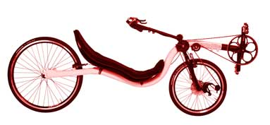 Low Racer Raptobike Recumbent Bicycle