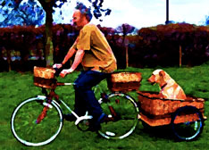Man with dog in bicycle dog trailer basket