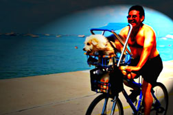 Man and his dog riding by the sea