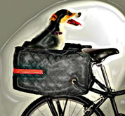 Rear rack bicycle dog carrier