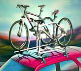 Roof-mounted car bike-rack