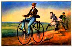 Velocipede Bicycle Poster